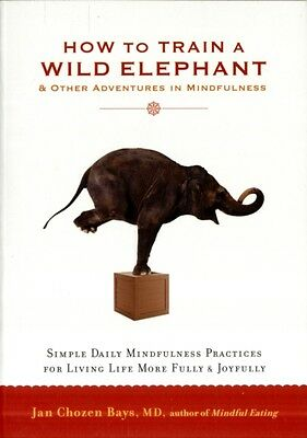 How to Train a Wild Elephant: And Other Adventures in Mindfulness (Paperback), .