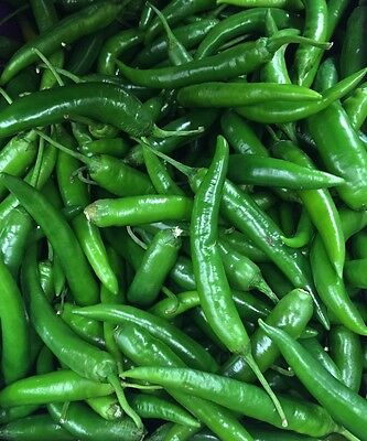 Fresh Thai Large Green Chillies-100g