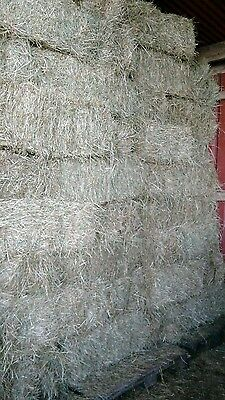 Good Quality Meadow Hay