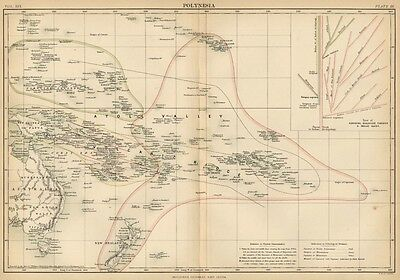Polynesia / Islands of Pacific: Authentic 1889 Map Including Graphic Racial Tree