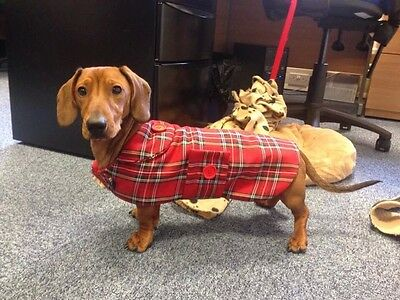 Dachshund Coat (Miniature Size) Made To Measure