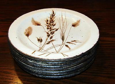 7  Midwinter Stonehenge Wild Oats Wedgwood Bread Plates 7 inches