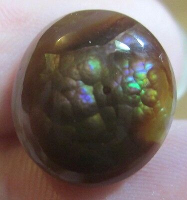 Natural Free form MEXICAN Fire Agate GEM stone  Multicolored 13x12