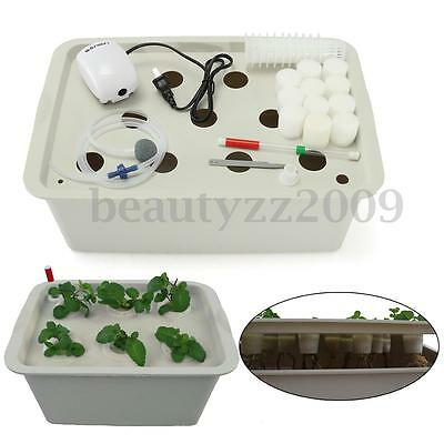 6/ 11 Holes Plant Site Hydroponic System Grow Bubble Tub DWC Deep Water Culture