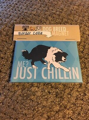 Border Collie Gifts Refrigerator Magnet  - Just Chillin Brand New! Dogs