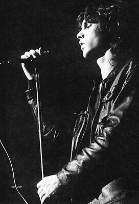 The Doors Poster Page . Jim Morrison . L11