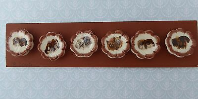HANDMADE CERAMIC BUTTONS  RENAE KITCHEN COLORADO USA - SET 6x DOGS - new on card