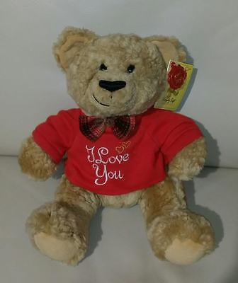Valentine Teddy Bear, New with Tags.