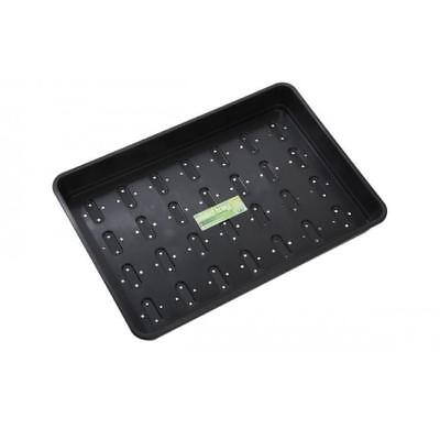Garden Seed Plants Tray Holes Garland Standard Seed Tray Black *Fast Post*
