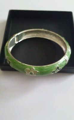 Stunning Silver Bangle  with Lime Handpainted Pattern