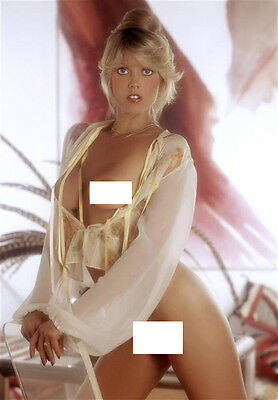 C #134 Ann Pennington fine art nude vintage 12x8inch approx A4 glossy photo