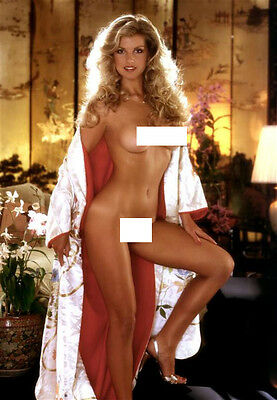 C #136 Terri Welles fine art nude vintage 12x8inch approx A4 glossy photo