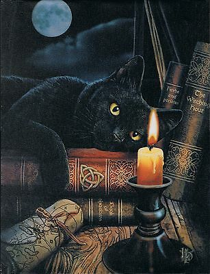 NEW Wall Plaque Witching Hour Cat Picture by Lisa Parker 25 cm x 19 cm Gothic