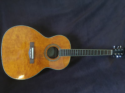 Fender GDO300 Acoustic Guitar - converted to left handed - easily converted back