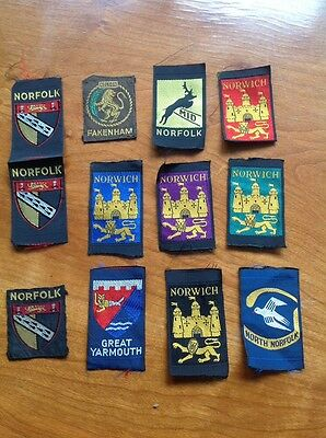 12 X Vintage Boy Scout Badge Patch County Places Group Norfolk Norwich Yarmouth