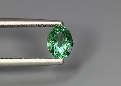 0.66 Cts_Simmering Ultra Nice Gemstone_100 % Natural Neon Green Apatite_Brazil