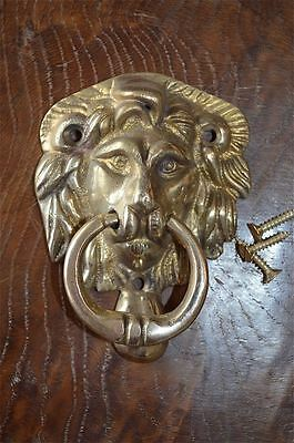 Classic Regency style small brass lions head doorknocker door knocker Z4