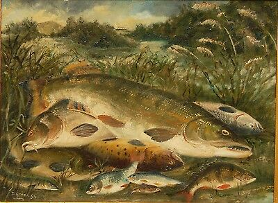 Oil Painting , still life of fish on riverbank , vintage fishing