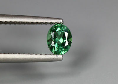 0.56 Cts_Simmering Ultra Nice Gemstone_100 % Natural Neon Green Apatite_Brazil