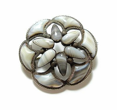 Beautiful Large Old Antique Victorian Scottish Silver & Agate Shield Brooch (B1)
