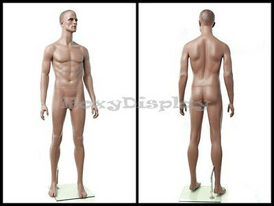 Male Fiberglass Mannequin Manequin Manikin Dress Form Display #MZ-ZEKE1