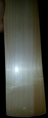 Sponsored  Profesional Players Cricket Bat- English Willow