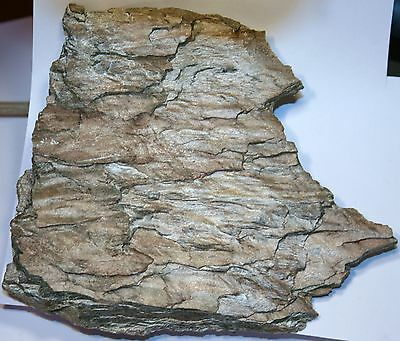 GRAPHITIC PHYLLITE COLLECTED FROM ISLE OF ISLAY (401 g)