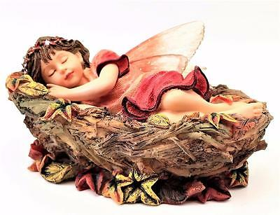 Retired Boyds Faeriessence Serena Faerienap Gentle Dreams Fairy Faerie ~ Mint