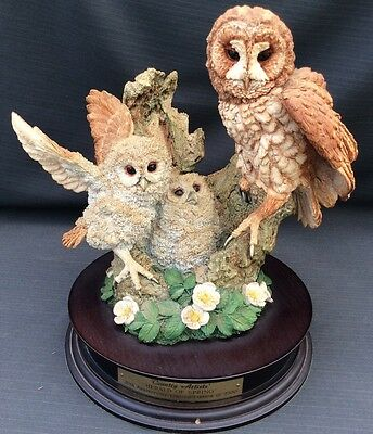 """Stunning !! Country Artists Tawny Owl """" Herald Of Spring """" Limited Edition"""