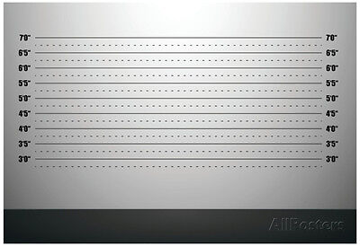 Detailed Illustration Of A Mugshot Background With Inch Scales Poster, 19x13