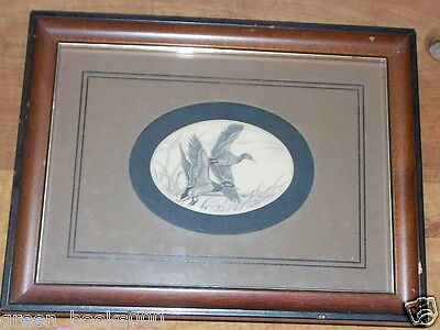 Stephen Barlow Scrimshaw Geese  Engraving Picture Engraving Outdoors