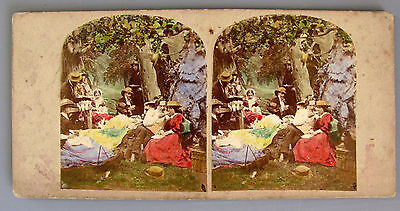 Stereo Card genre picnic Hand Tinted 1860s Albumen prints