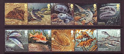 2014 Sea Creatures Set U/m - Below Face