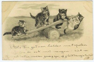 Cat Art~Kittens Playing on Seesaw~Old UBD Early 1900's Embossed Postcard