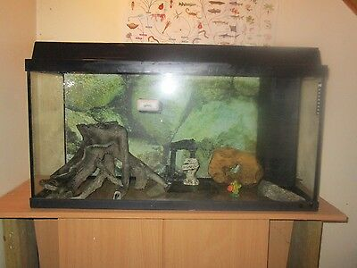 fish tanks with  accessories