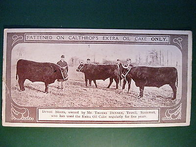 Antique advertising bookmark CALTHROP BROS  Oil Cake Cattle Feed Farming Cows