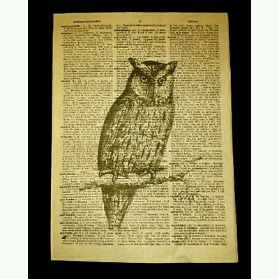 Vintage dictionary art print on owl # 3 old page antique book wall hanging