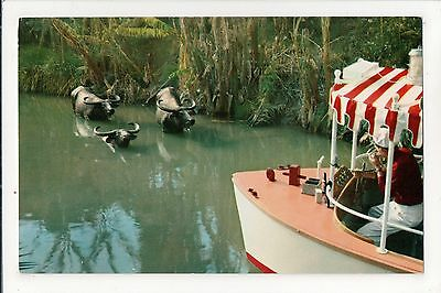 """DISNEYLAND - Two different Adventureland """"Tropical Rivers"""" cards"""