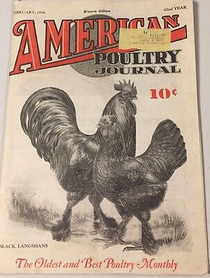 February 1936 American Poultry Journal