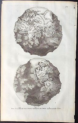 1694 Map of the world by Willem Goeree