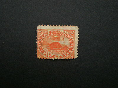 Canada early unused 5cent beaver stamp perforated unchecked