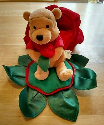 Winnie the Pooh Bear in a rose, soft toy, valentine
