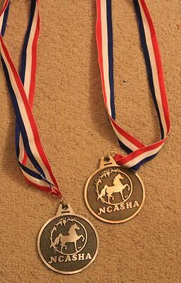 Horse Show prizes, award metals, horse show, champions