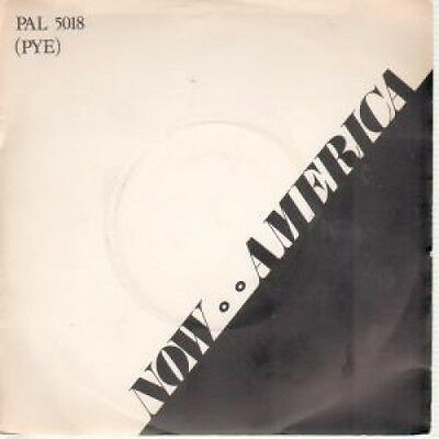 "POPULATION Now America 7"" VINYL UK Paladin 1977 B/W Ship Of Life (Pal5018) Pic"