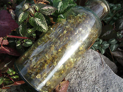"""Vtg Antique 7"""" Apothecary Blue Glass BOTTLE Jar Holiday w/Gold Mica Like Flakes"""
