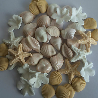 24 Edible Cup Cake Toppers Cake Decorations Ocean Seashell Starfish Beach Set