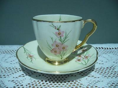Vintage Wembley Ware Hand Painted & Gilt Demitasse Duo - Geraldton Wax - Gc