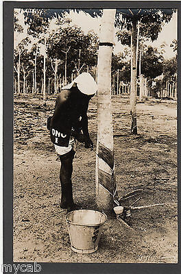 Postcard Malaysia young man collecting rubber from a tree on plantation RP early