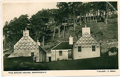 BERRIEDALE Caithness Scotland Stags Heads b&w PC c1920s