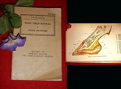 "Vintage Book1939 ""War Department BASIC FIELD MANUAL ANIMAL TRANSPORT"" HORSES"
